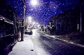 The first snow of 2016 in Belgrade