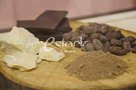 Muzej cokolade
